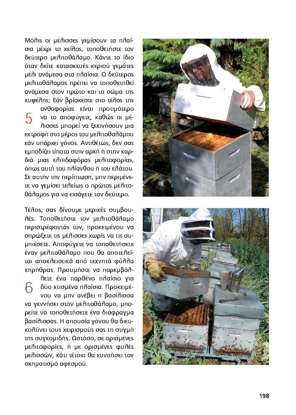 Η τοποθέτηση ενός μελισσοθάλαμου